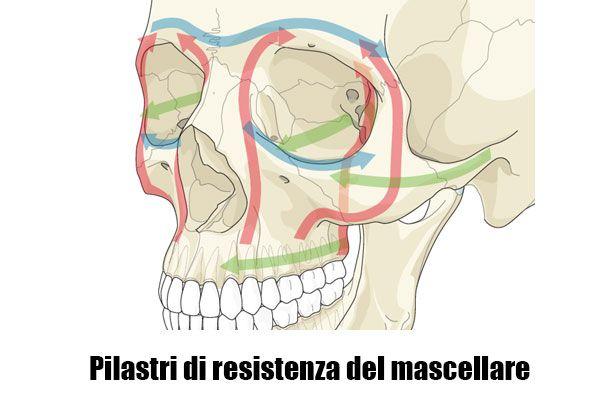 Pilastri di resistenza facciale